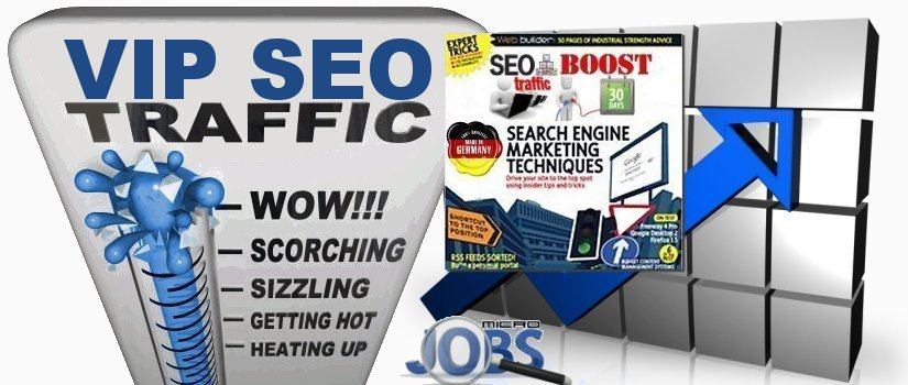 Organic & Targeted Traffic Service VIP SEO Boost