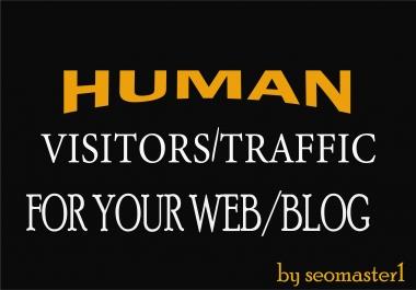 9000 Human visitors/traffic to your Web/Blog Adsense safe and get Good Alexa rank