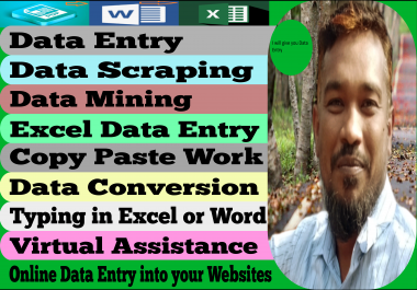 I will give you data entry, your data collection,copy paste,excel data entry in one day