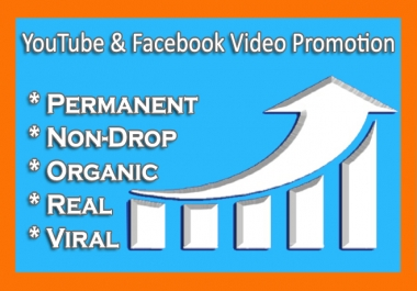 Rapid Facebook And YouTube Organic Video Promotion Service