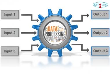 will provide 5k data processing service
