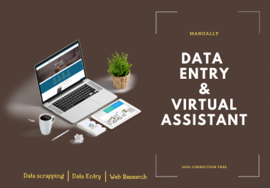 I Will manually do your data entry