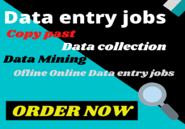 Data entry jobs Copy past Data collection Data mining Offline Online Data entry