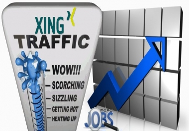 Social Traffic from Xing