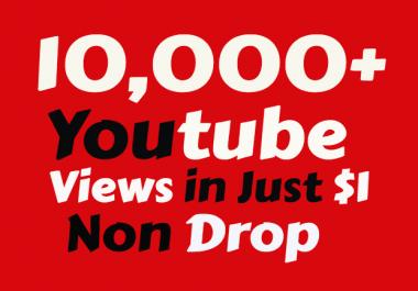 I will add Super Fast 10,000 Youtube Views