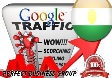 Organic traffic from Google.ne (Niger) with your Keyword