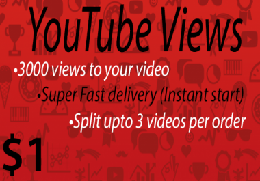 1000 to 1500 High Quality Youtube Vie ws Fast delivery