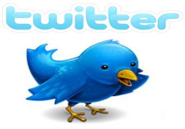 provide 5000+ twitter followers