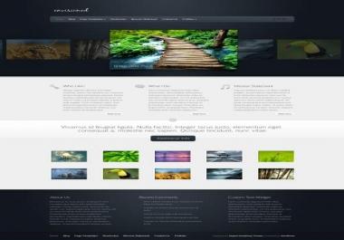 High Quality wordpress website