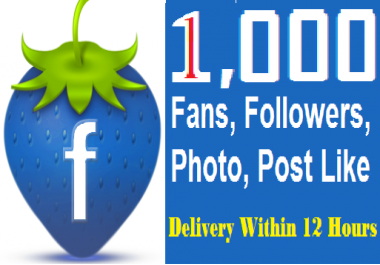 Get 1,000+ Permanenet Facebook Likes or Fans  Or 1,000 F... for $1