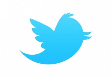 I will provide u 10000+ real looking twitter followers