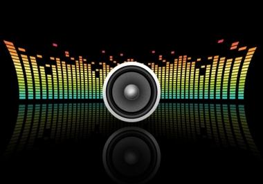 I will Convert any audio file