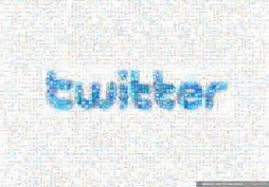 send You 13000+ Twitter Folllowers your account Without Need Your Password in just 24 Hours for