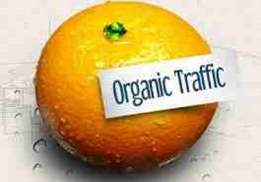 Give you Access to my SEO Tool that will Triple your Website Organic Traffic