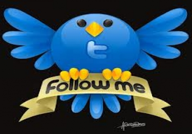 Big Offer 500 Followers Or 500+ Retweet or 500+ Likes... for $1