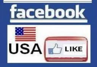 provide targeted USA 60+ real human permanent facebook l... for $1
