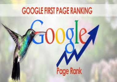Custom offer for google ranking for $1
