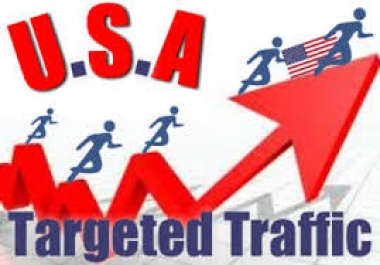 build 9999 daily USA organic visitors from google