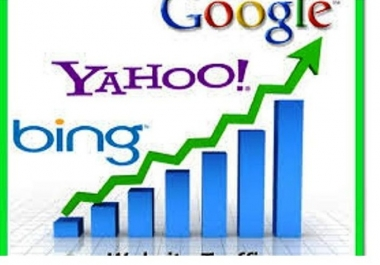 drive 20 000 20k Real USA Targeted Traffic To Your Site or Any Offer