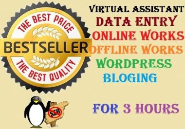 do any kind of data entry work 3 hours
