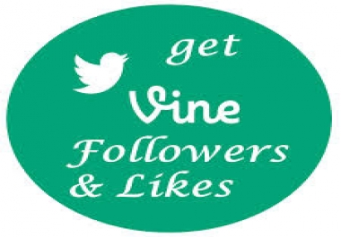 Give you 120+ Vine Followers/Likes on your website