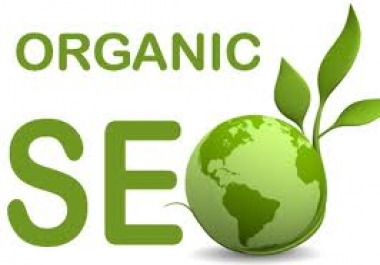 I will seo optimize your page for proper search engine organic traffic marketing