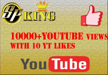 I will give you 12000 youtube views and couple of likes