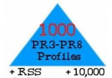 I will make link pyramid 1000 PR3 PR8 profiles and 10k blog comments !!%%^^*