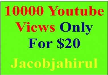 Provide you 1000+ USA YouTube Views & 10 Likes & 5 Subscribers & 5 Comment only