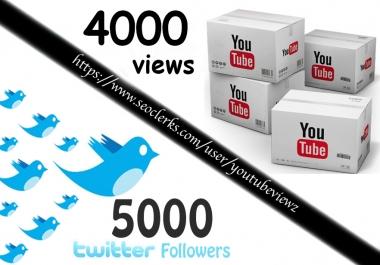 4000+ High Retention Youtube Views + splitable