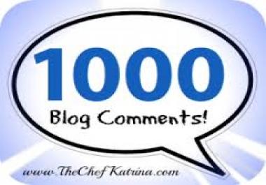 do 1000 edu Blog comments../*/..