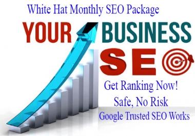 Get 100% White Hat 1 Month SEO Package - Google Safe SEO Link build Service