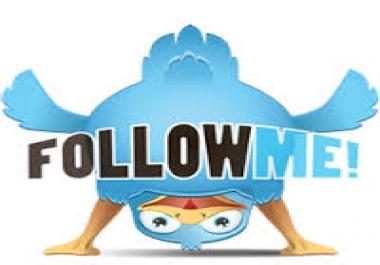 Add 3000 High Quality Verified Twi tter Foll ower or 1k re tweet or 1k Favorite