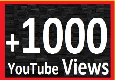 Give You 1299+ NON Drop Lifetime Guaranteed Views