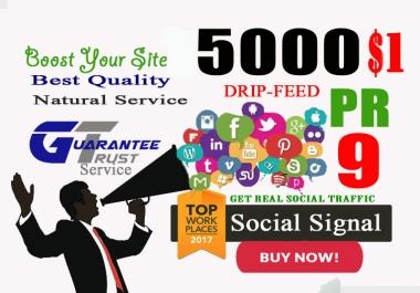 5000 Real SEO PR9-PR10 Social Signals Including Google Share  ones pinterest Website Visitors