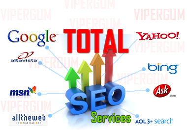 Increasing Site Position using Total SEO Services
