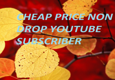 NON DROP 120+  YOUTUBE SUBSCRIBER With Super Fast