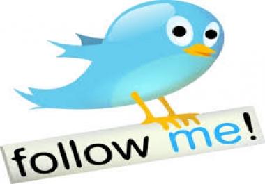 ADD 10,000 NON DROP PERMANENT Twitter Followers