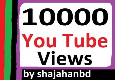 10,000 To 15,000 Youtube Views + 110 Extra Bonus Likes