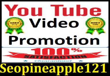 YouTube Video promotion Marketing with Non Drop fast services