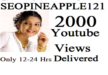 1,000-2000 High Quality Views Fully Safe Instant Start Lifetime Guaranteed
