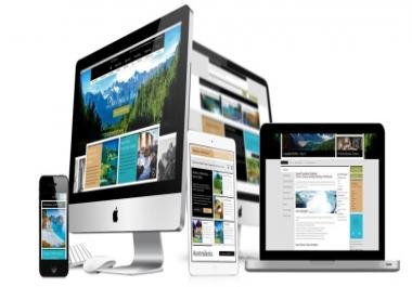 I will build professional website design