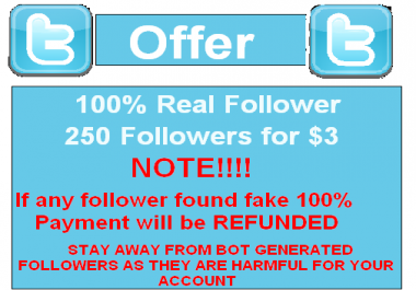 provide 100+ Twitter Followers, 100% Real and Active Hum... for $1