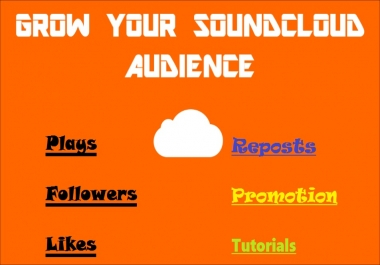 I will give you High Quality SoundCloud Music Promotion