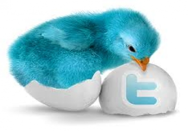 Greatest 15 000+ Twitter Followers Will be Added to Your Account Just