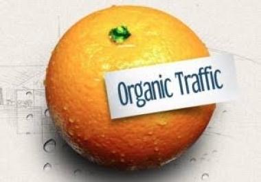 1000 Google Organic Search Traffic- Adsense Safe