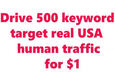 Drive 500+ keyword target USA traffic by google