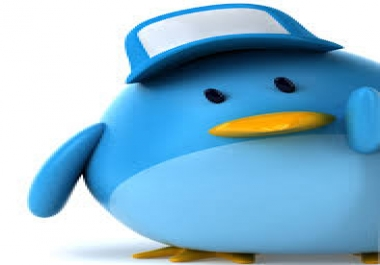 I WILL ADD 5000 TWITTER FOLLOWERS WITHIN JUST 24H