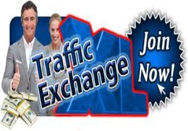 Be Happy We Send 4000 + Adsense Safe Unique Human Visitors Traffic to your website Or Any Link
