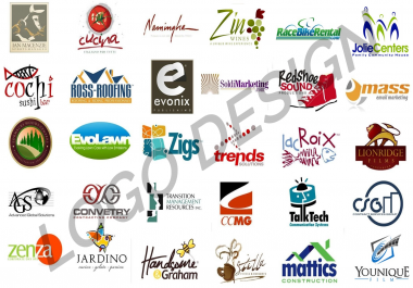 Logo Professional Design